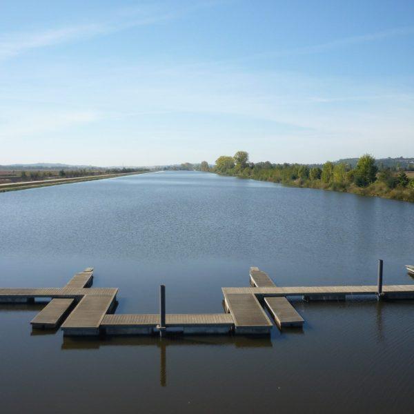 Lake Rowing Banner 1